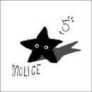 FIVE/MOLICE