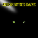 SHINE IN THE DARK/blh