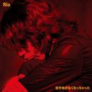 空き地がなくなっちゃった/Rio