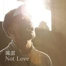 Not Love/鳳雷