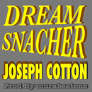 DREAM SNACHER (RIGHTNESS RIDDIM)/JOSEPH COTTON