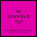DIAVOLO/ギャロ