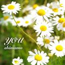 you/shimamo