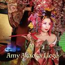 Amy Akaoka Llego/Amy Akaoka