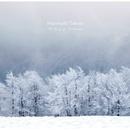 The Diary of Soundscape/Murohashi Takuya