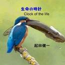 生命の時計/起田健一