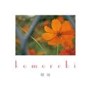 komorebi/瑠璃