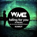 falling for you (DJ YU-KI aka UMAMIOTO Remix) [feat. HIKARI]/KAMUY