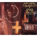 DOWN IN THE VALLEY/NATURAL CALAMITY