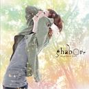 shab◎n is Here/shab◎n
