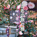 五色の散り椿/桜 舞妓の恋/漆原 綾