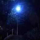 Night Trip/Keyboard-Suna