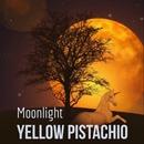Moonlight/Yellow Pistachio