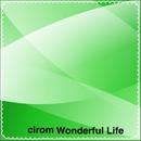 Wonderful Life/cirom
