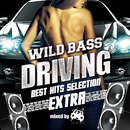 WILD BASS DRIVING -BEST HITS SELECTION EXTRA- mixed by #ATAKARA/various artists