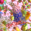My Boo (triple j Like A Version) [feat. Vince Staples, Kucka, Ngaiire & Vera Blue]/Flume