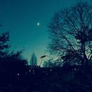Bonne Nuit ~ Crystal Singing Bowl for Beautiful Sleep/RAURA