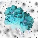 Blue/Yuki Tamakoshi