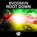 Root Down/BVDDMVN