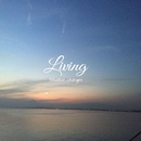 Living/situation changes