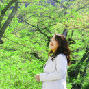悲しみの向こうに/川村妙子