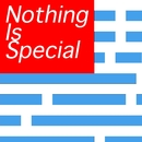 Nothing is special/THE MINT