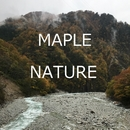 Nature/Maple