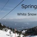 White Snow/Spring