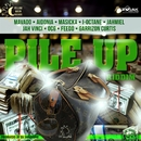 Pile Up Riddim/Various Artists