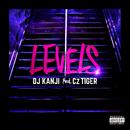 LEVELS (feat. Cz TIGER)/DJ KANJI