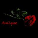 Anlique/Anlique