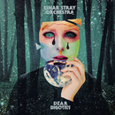 DEAR BIGOTRY/Einar Stray Orchestra