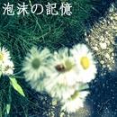泡沫の記憶/Kanata.S