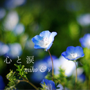 心と涙/miho & ν