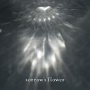 sorrow's flower/dyn