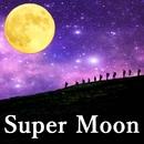 Super Moon/奥村真理子