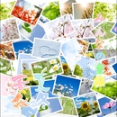 みんなの童謡 春夏秋冬 オルゴール・コレクション 1/街のオルゴール屋さん