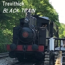 BLACK TRAIN/Trevithick