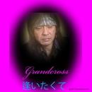 逢いたくて/Grandcross