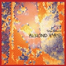 Almond Eyes/野村正剛