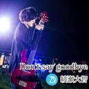 Don't say goodbye/綾瀬大智