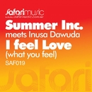 I Feel Love (What You Feel) [feat. Inusa Dawuda]/Summer Inc.