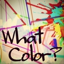 What color?/SE→Y@