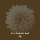What You Really Need (feat. Miraa May)/AmPm