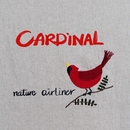 Cardinal/nature airliner