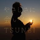 やさしさに会いたい/TSUNEI