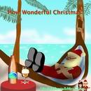 How Wonderful Christmas./ウクレレサンタ & ミセスクロース