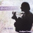 夢の中で逢えたら (feat. 柳沢二三男)/沢すすむ