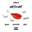 What You Want (feat. RAU DEF & Young Yujiro)/DJ BULLSET