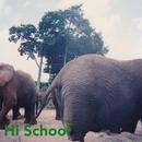 Hi School/SEA MY PAST